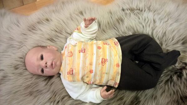 Babyshirt-Wickelshirt-Sweat-natur-Aermel-Streifen-Wald-mit-Puppe