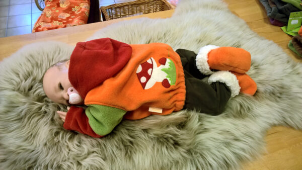 Fleecepulli-Fliegenpilz-rot-orange-grün-von-hinten-mit-Puppe