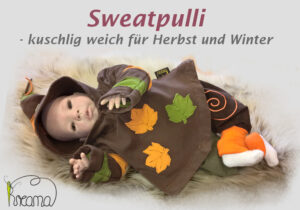 Titelbild-Sweatpulli-Langarm